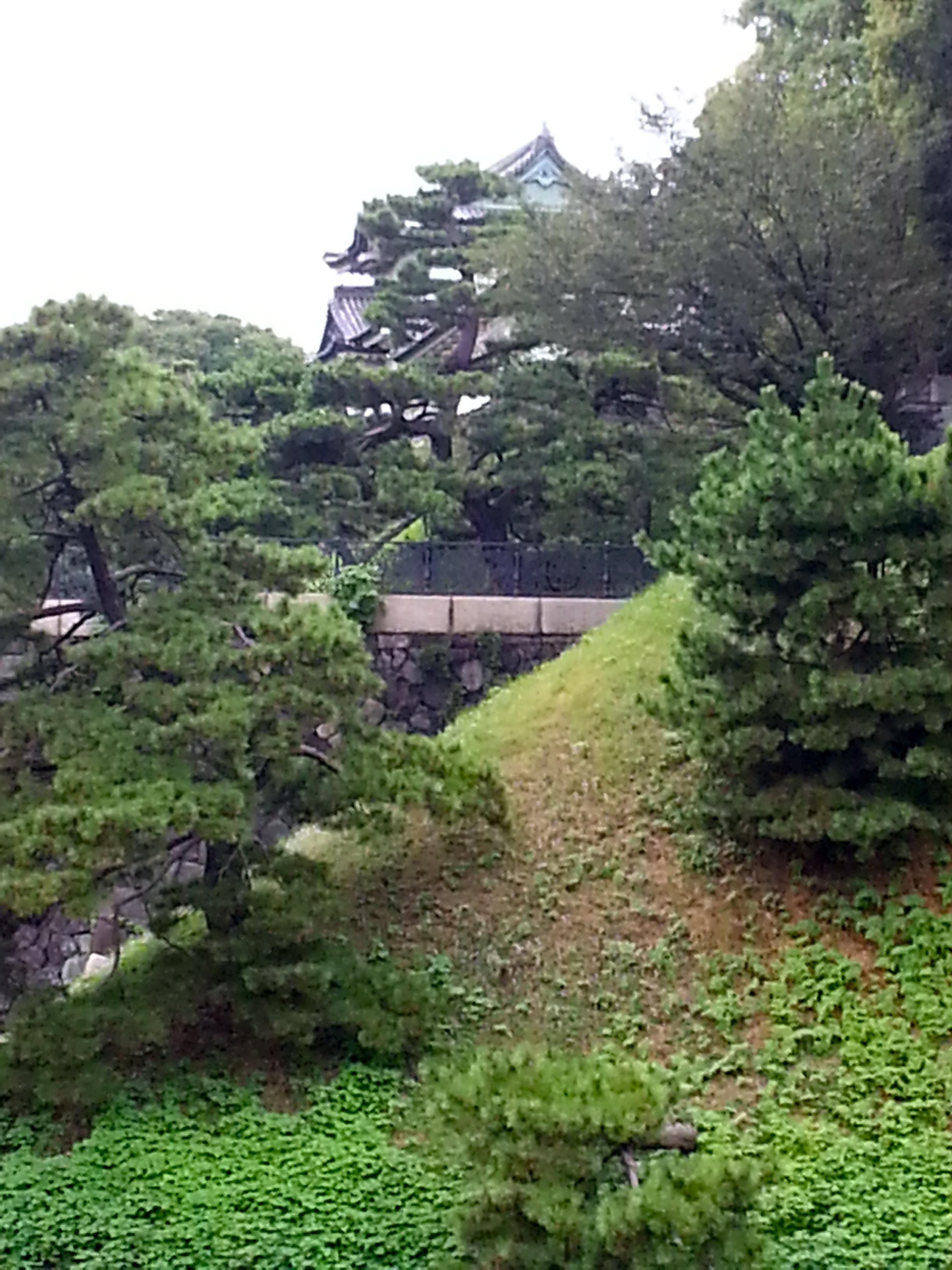 Tepan yaki les poussins for Le jardin imperial marines de cogolin